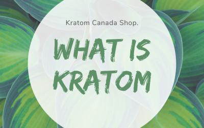 What Is Kratom